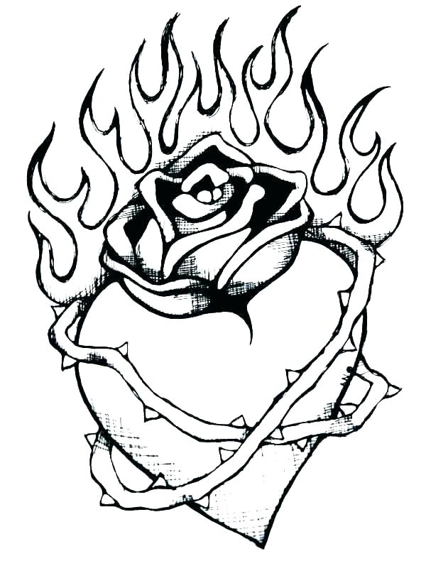 600x797 Rose For Coloring Rose Coloring Template