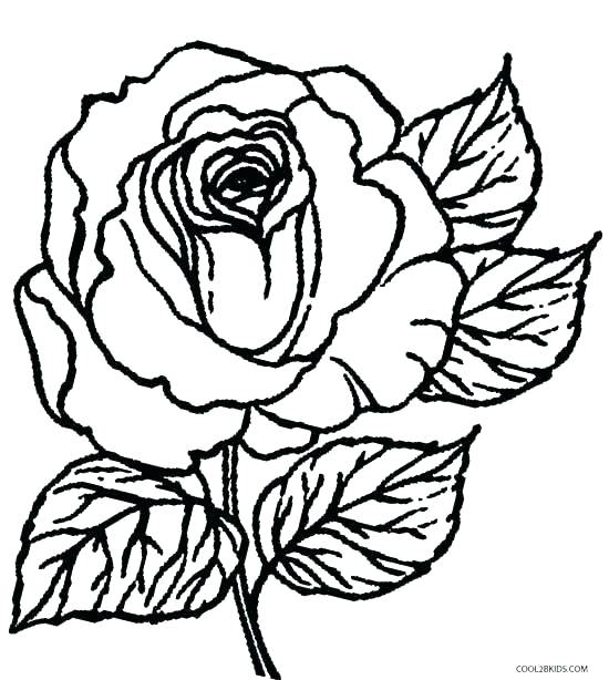 550x614 A Rose Coloring Pages Coloring Pages Fun To Draw Coloring Pages