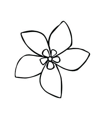 309x400 Easy Drawing Flowers Jasmine Flower Simple Drawing Easy Drawing