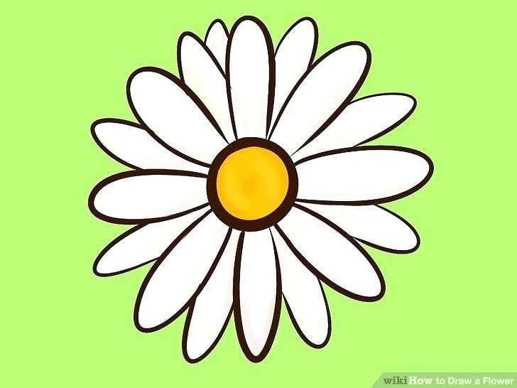 728x546 Beautiful Easy Flowers To Draw Image Titled Draw Flowers Step