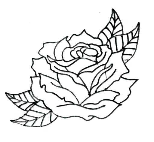 512x473 Rose Drawing Outline Flowers Easy Rose Drawing Outline