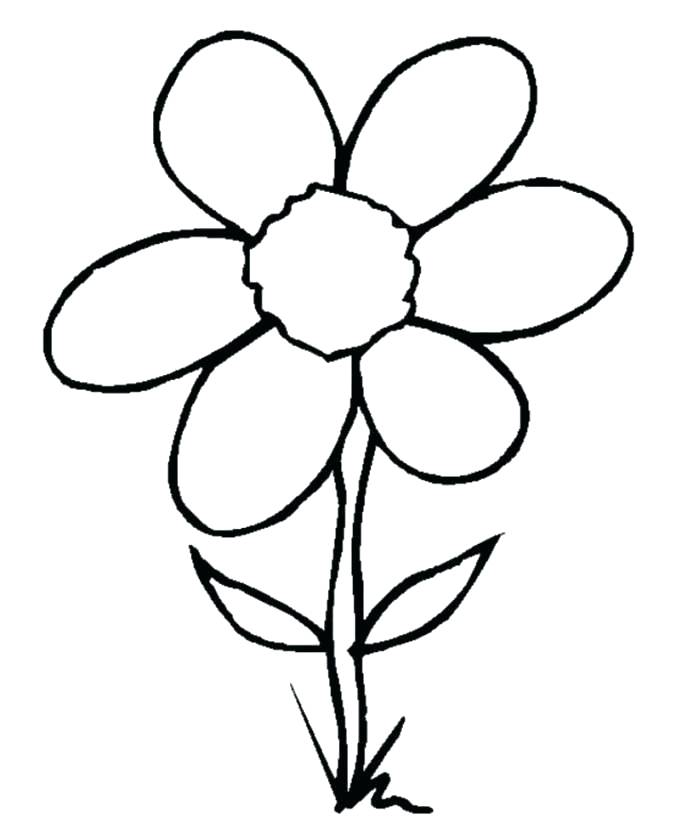 699x828 Simple Easy Flowers To Draw Simple Flower Drawing Easy Simple Easy