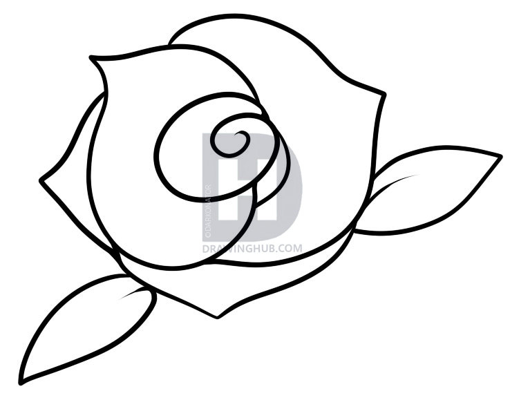 738x579 How To Draw A Rose For Kids, Step