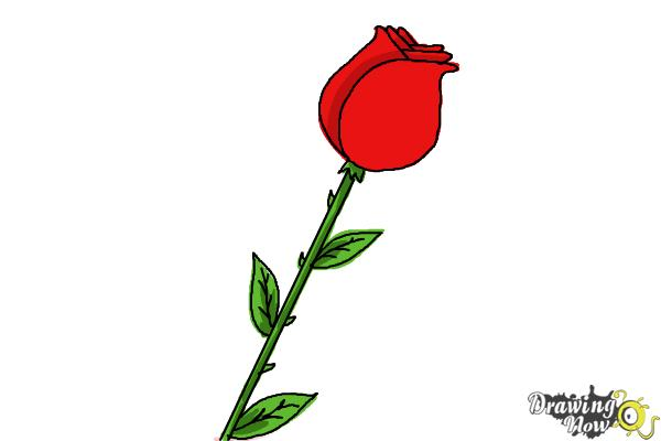 600x400 How To Draw A Rose For Kids