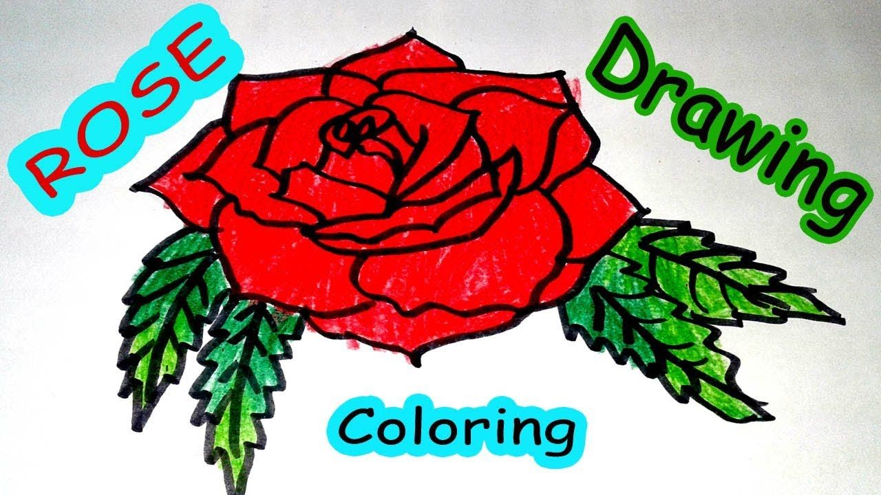 1280x720 Rose Flower Drawing Easy For Kids