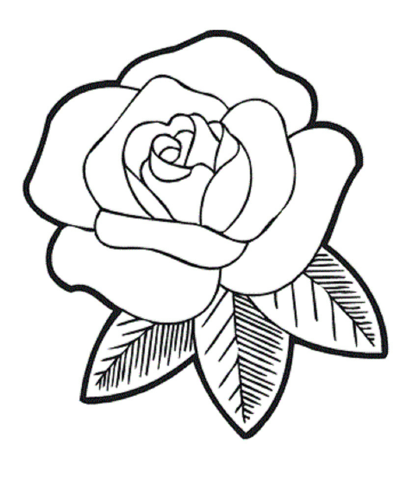 837x992 Rose Flower Drawing For Kids And Drawing Roses For Kids Rose