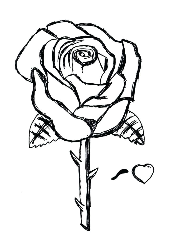 744x1024 Roses Printable Coloring Pages Free Printable Roses Coloring Pages