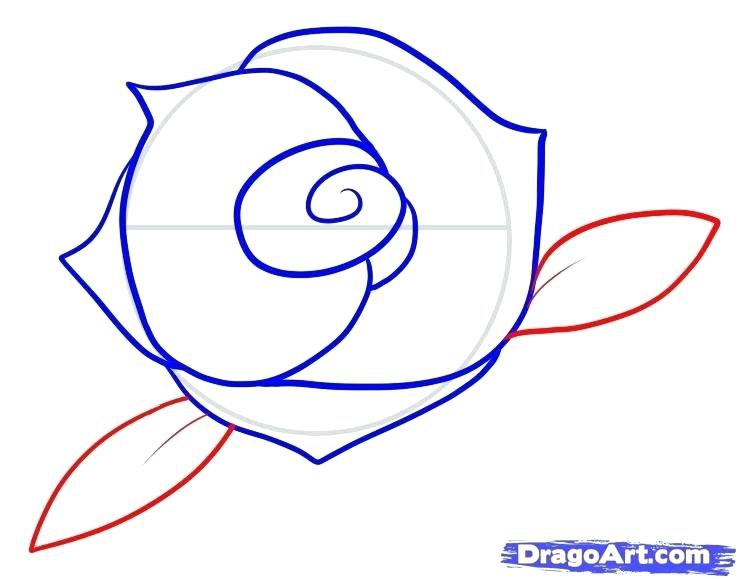 738x579 Drawing Of Rose For Kids How To Draw A Rose For Kids Step