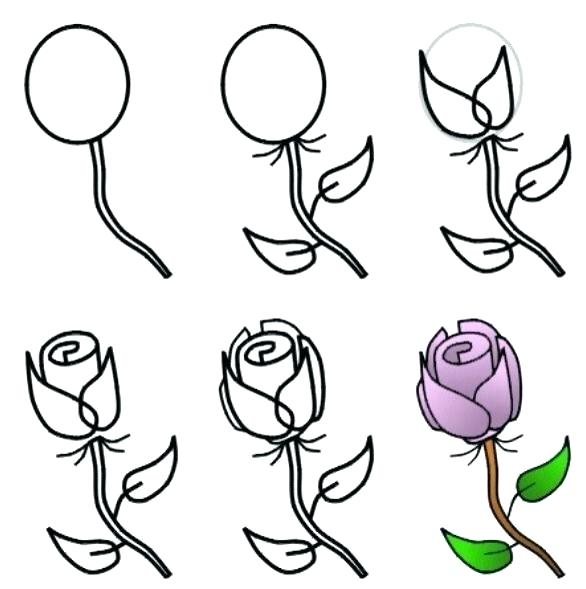 586x589 Simple Flower To Draw Rose Drawing Simple How To Draw A Rose