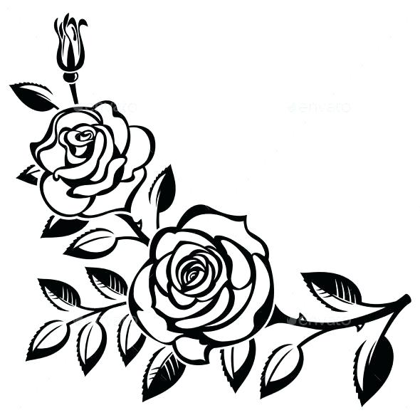 590x590 Rose Line Drawing Clip Art Roses Black And White Architectures