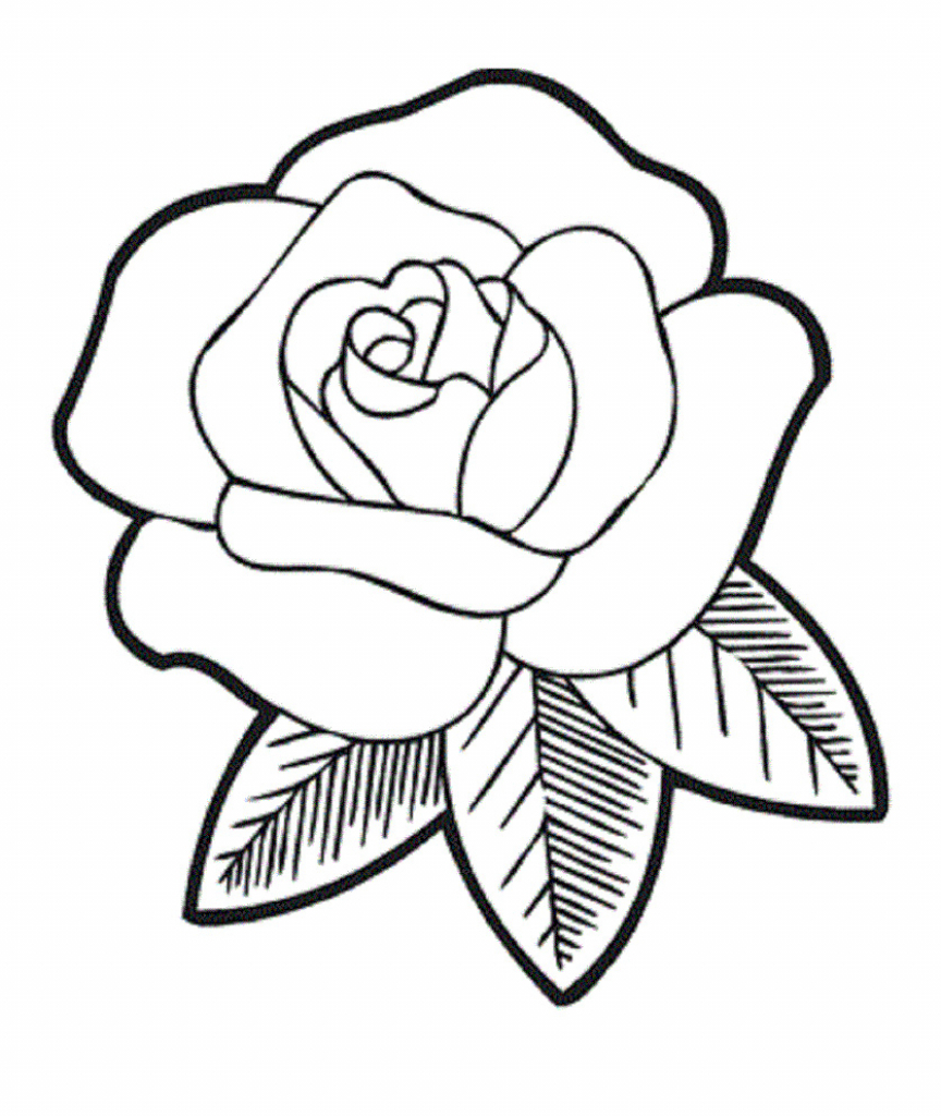 864x1024 Easy Drawing Flowers Rose