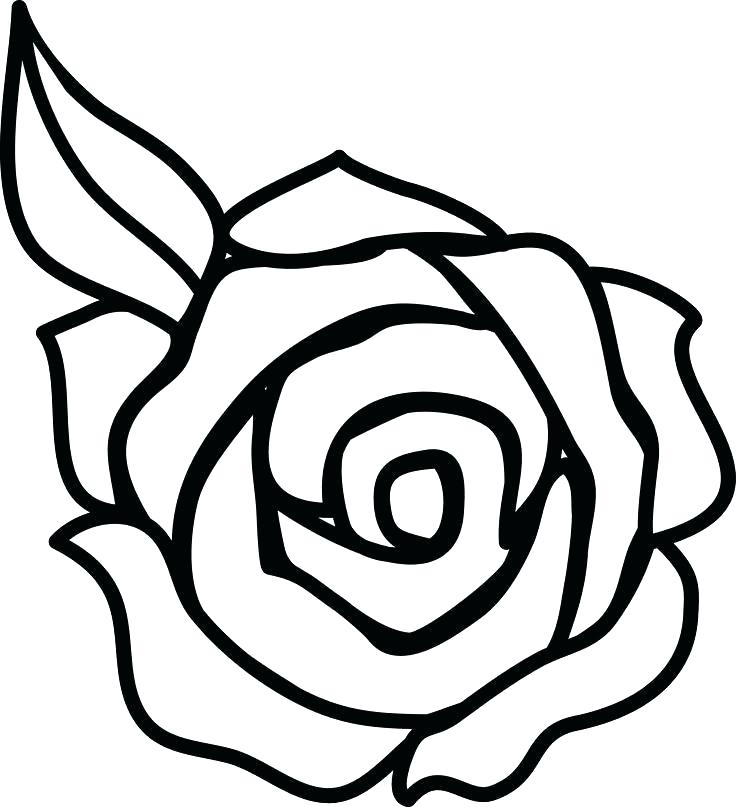736x807 easy rose to draw draw a rose rose drawing easy rose flower