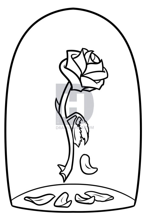 502x719 Beauty And The Beast Rose Drawing, Step