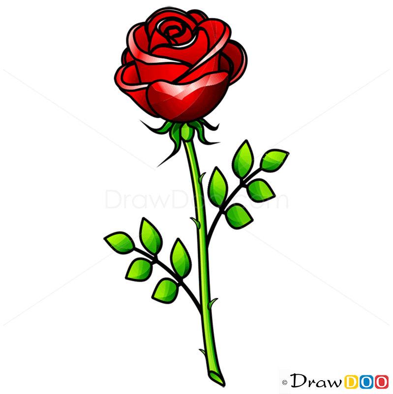 799x800 Huge Collection Of 'rose Flower Drawing Step