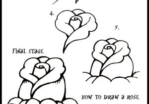 300x210 Steps To Draw A Rose For Beginners How To Draw A Rose From Word