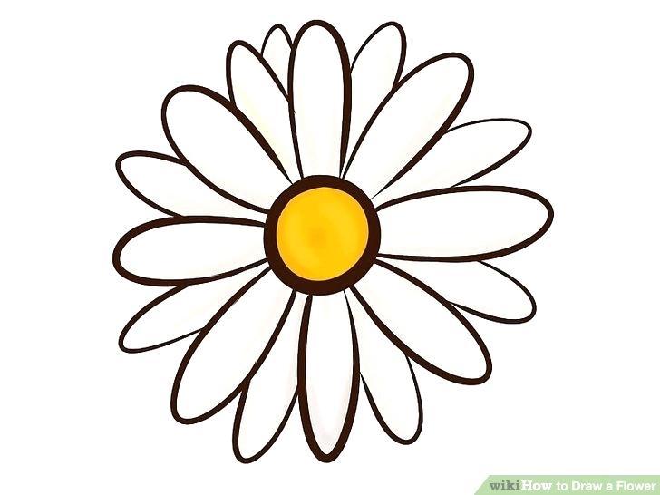 728x546 Flowers Easy To Draw