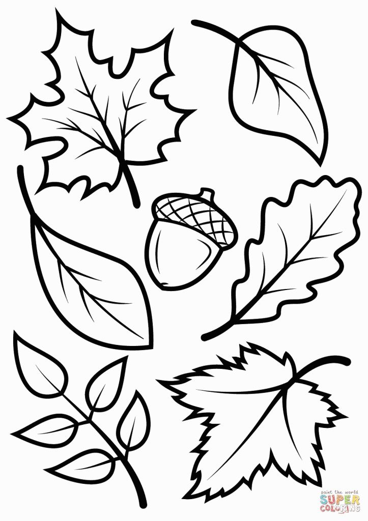 723x1024 Drawing Of Flowers Step