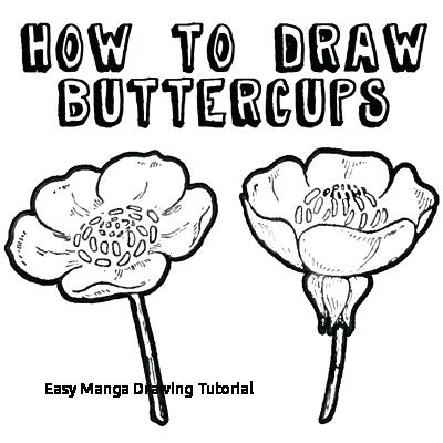 400x400 Easy Draw Flowers Image Titled Draw Flowers Step Easy Draw