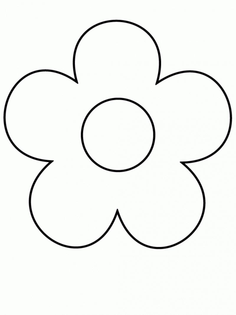 800x1067 Easy Drawings For Beginners Flowers Easy Drawings For Beginners