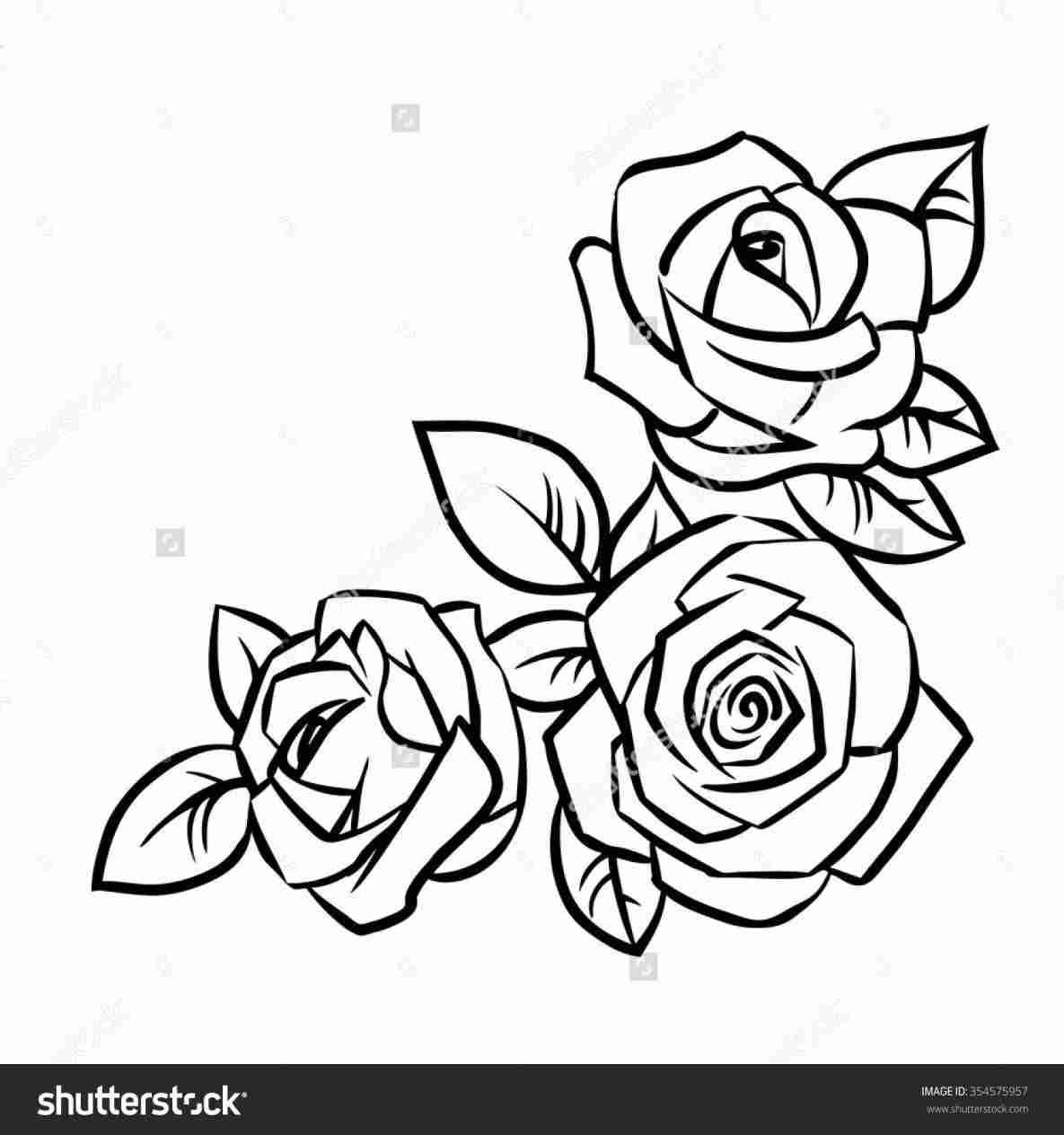 1185x1264 S Easy Black Rose Drawing With Vines Vine Tattoos Rhcom