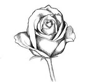 300x266 Tumblr Rose Drawing Black Rose Art Drawings, Pencil Drawings