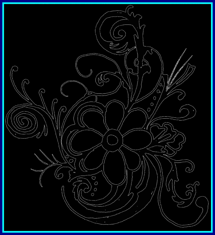 1402x1527 Black And White Roses Image Royalty Free Stock Huge Freebie