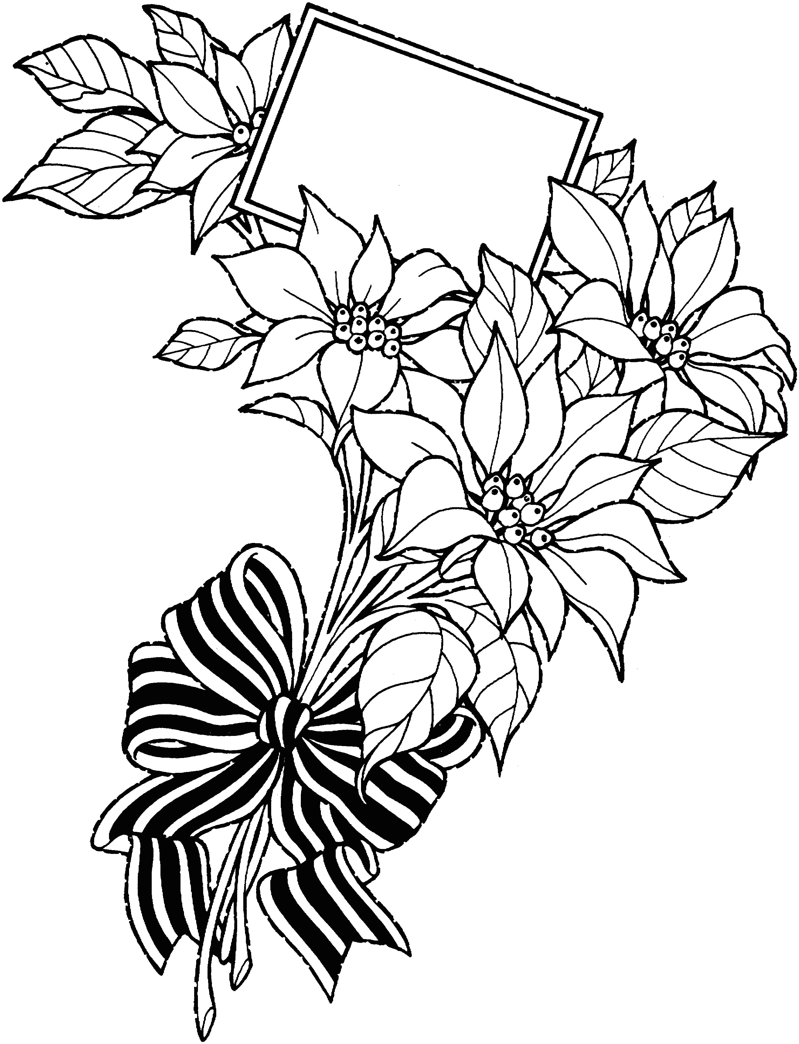 2749x3592 Drawing Of A Rose Vase Rose Drawing Fresh Awesome White Rose