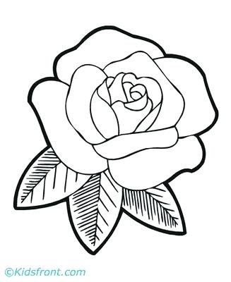 327x400 Flowers To Draw Roses Drawing Step