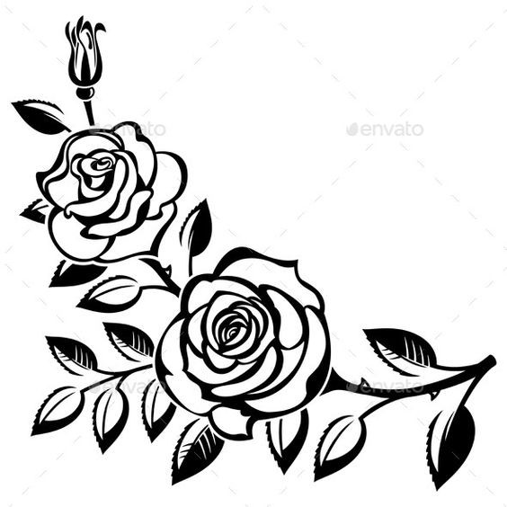 564x564 Black And White Rose Drawing Calendar Alimy Us