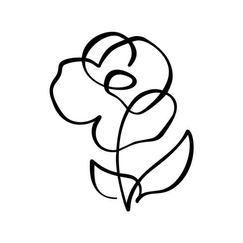 490x490 Rose Flower Concept Continuous Line Hand Drawing Calligraphic