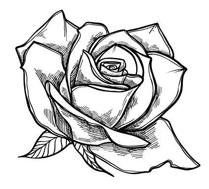 425x385 Black And White Rose Flower Sketch Vinyl Decal Sticker
