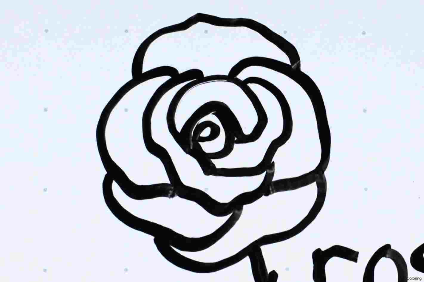 1422x948 Beauty And The Beast Rose Drawing Rose Drawing Draw Alima Us