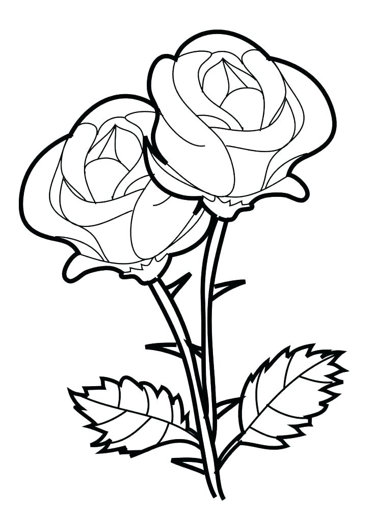 732x1024 Beauty And The Beast Rose Coloring Pages