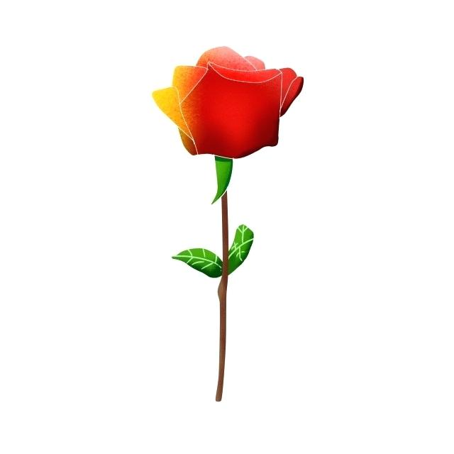 640x640 rose drawn single cute cartoon hand drawn style rose drawn style