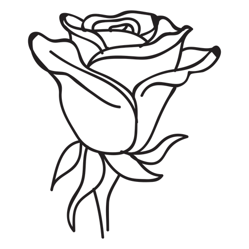 512x512 Blooming Rose Head Stroke Icon