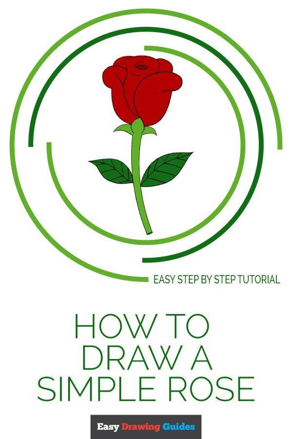600x900 How To Draw A Simple Rose Color Pencil Drawings, Drawing