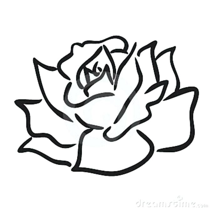 671x671 Simple Rose Bud Drawing How To Draw A Rose Easy Step Simple Rose