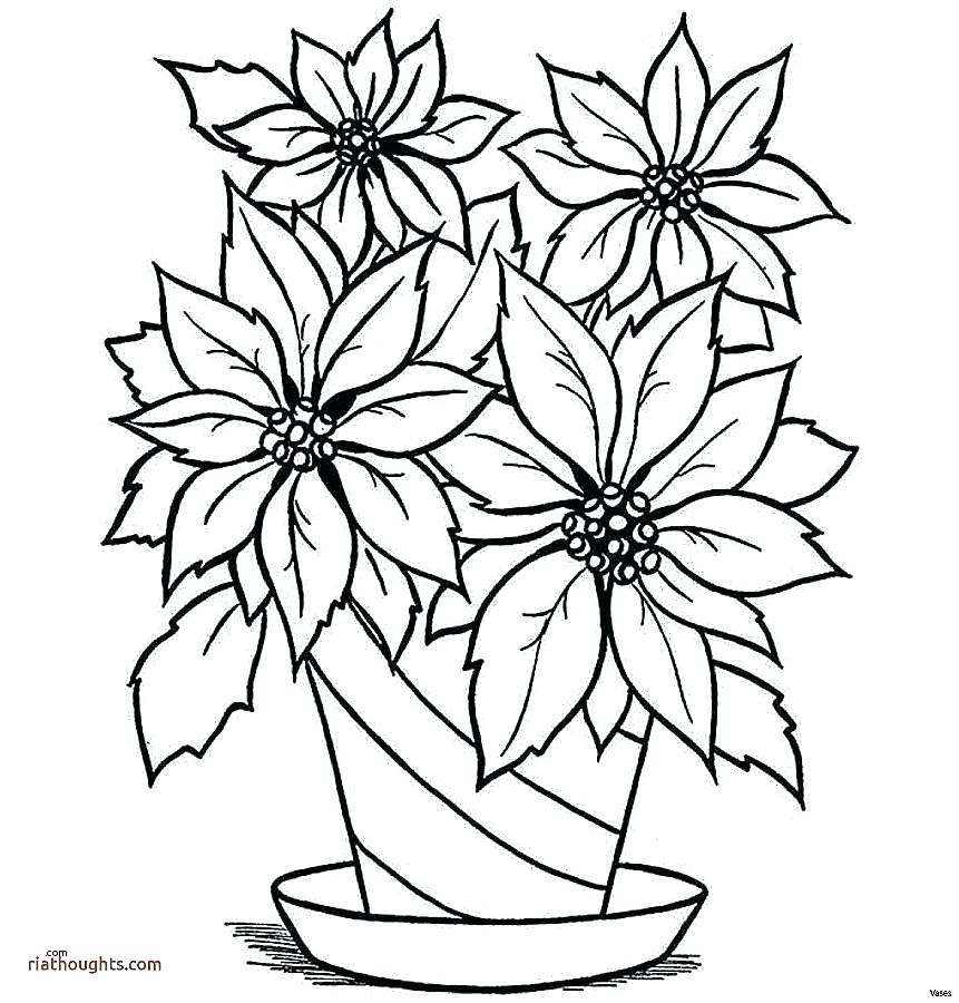 861x900 Drawing Roses For Beginners
