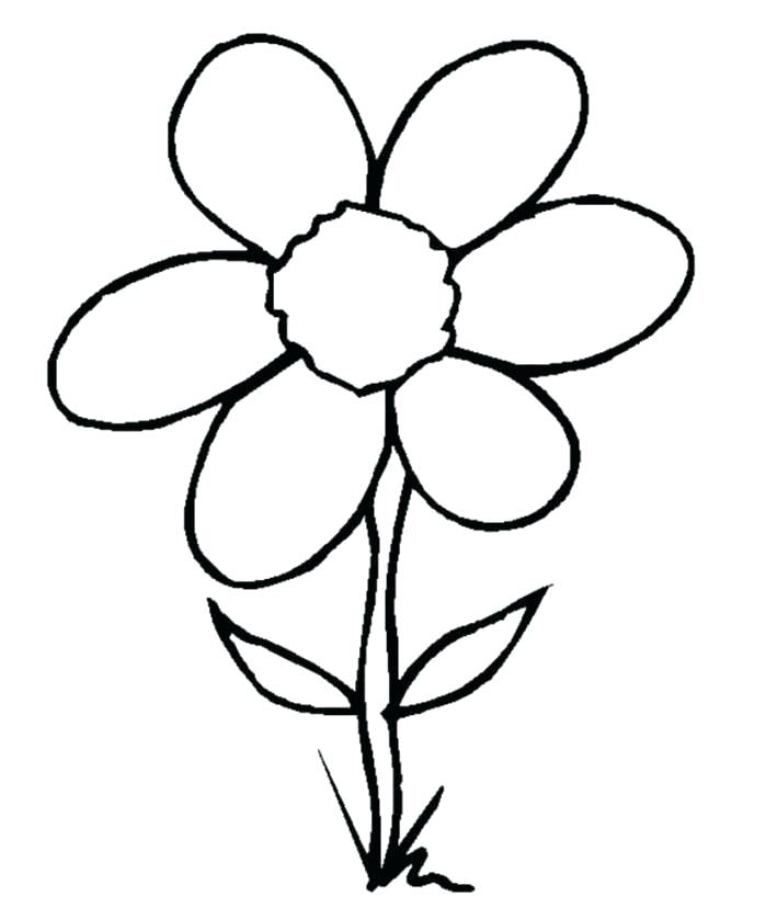 699x828 Simple Drawing Flowers