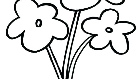 570x320 Drawing Flowers Easy Pencil Drawing Flowers Easy
