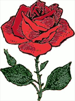 260x350 Rose Drawing Clipart