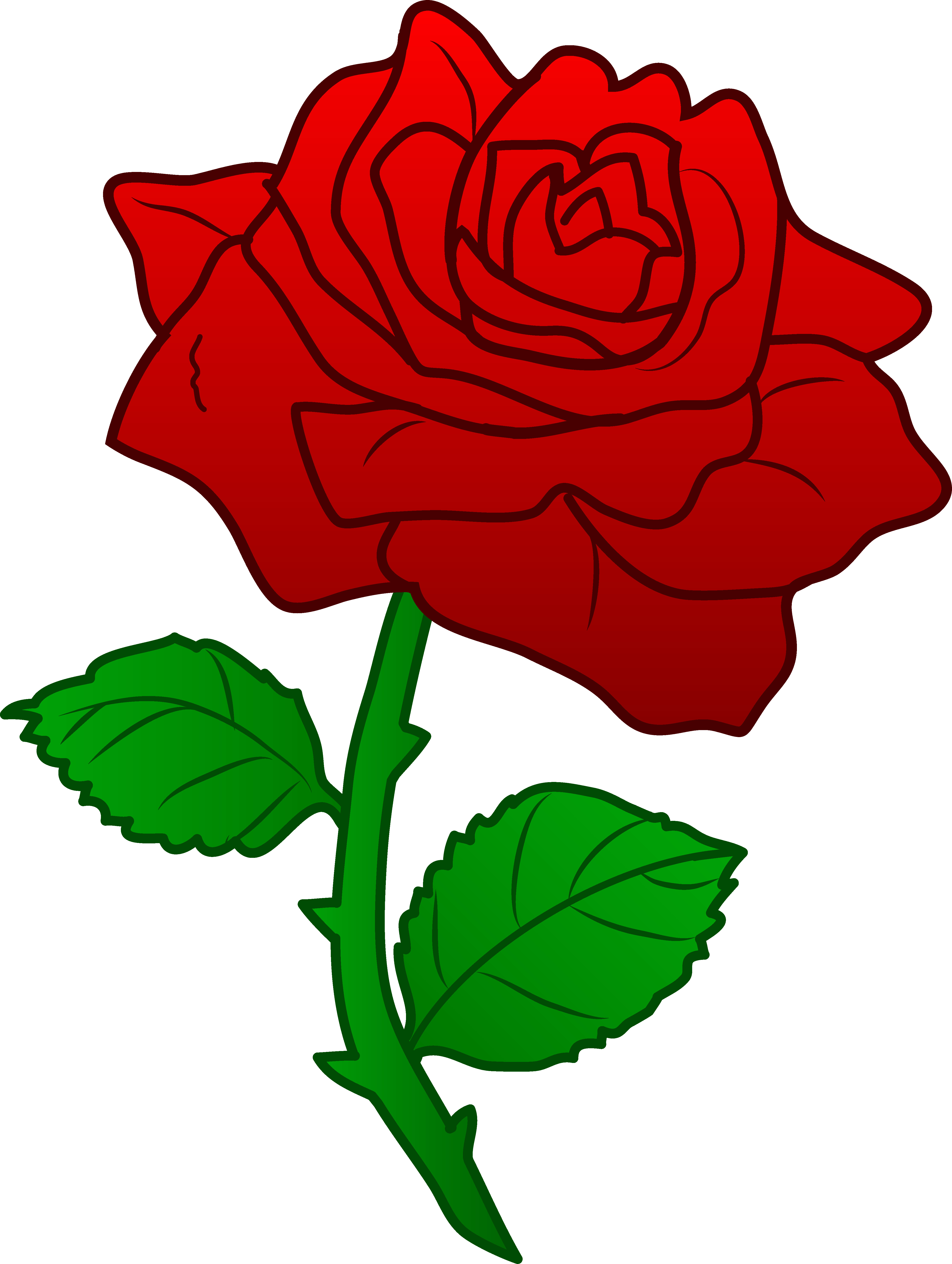 4481x5947 Arts Rose Clipart Outline Very Good Knumathise Rose Drawing