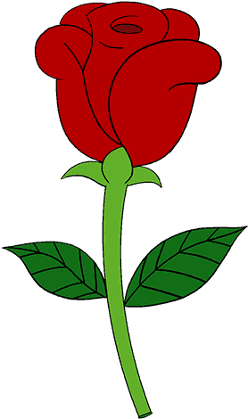 278x470 Rose Drawing Download Free Clipart With A Transparent Background
