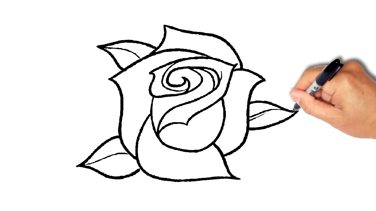 1280x720 Simple Rose Drawing