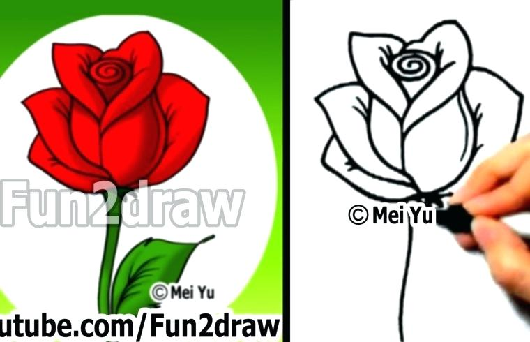 760x490 Video How To Draw A Rose