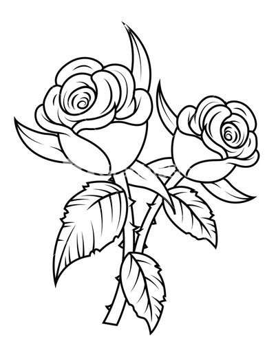 401x500 Rose Plants Clipart Black And White