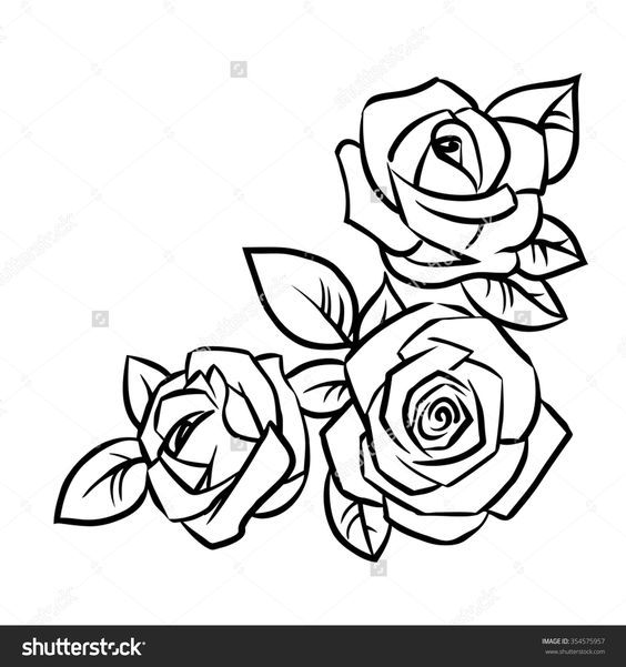 564x601 Simple Rose Outline Drawing