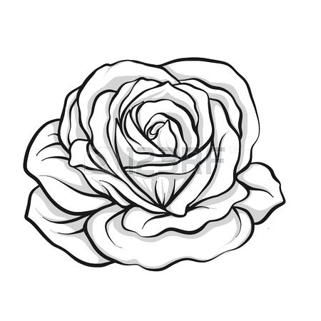 450x450 rose flower outline tattoo rose flower outline tattoo rose flower