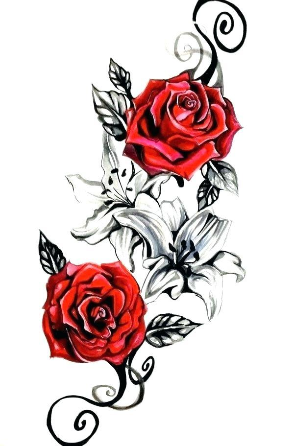 600x911 Rose Flowers Design Drawing