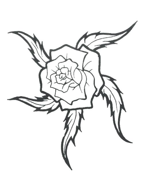 501x649 Rose Tattoo Outline Free Design Ideas Flash Designs Simple